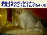 '05 blog 2219.JPG
