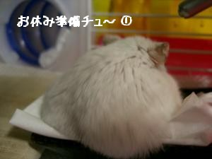'06 blog 1587.JPG