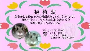 招待状-1.jpg