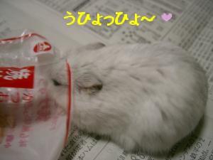 '06 blog 1324.JPG